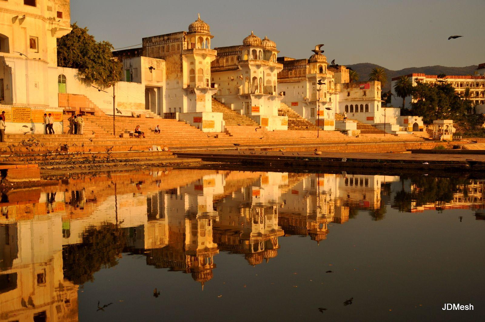 Room Creater Pushkar Day Tour Savista